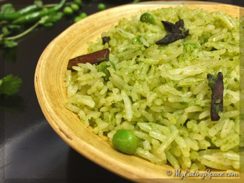 Cilantro rice made with fresh cilantro and spices with hot green chilli makes the dish colorful and unique. The colorful rice can be your next dinner, lunch box or even a side for any dish. This goes well in the burritos or as a side for the enchiladas. In South India the cilantro rice also known as coriander rice is served as a main dish.