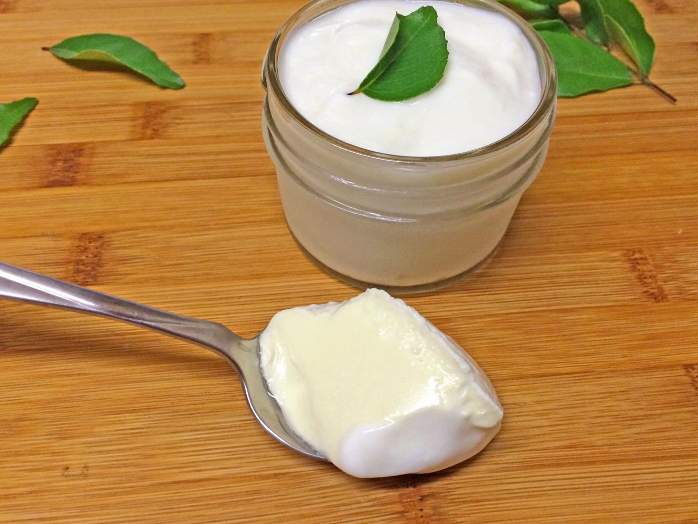 MIND Diet- Sharpen the brain with brain food recipes, Homemade yogurt